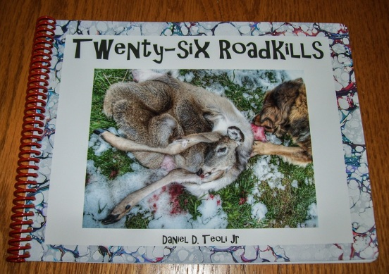 Twenty-six Roadkills Daniel D. Teoli Jr.