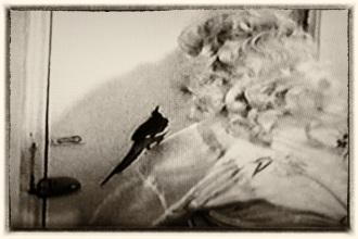 5 Barbara LeMay in Gone...Up In Smoke! 1975 mr