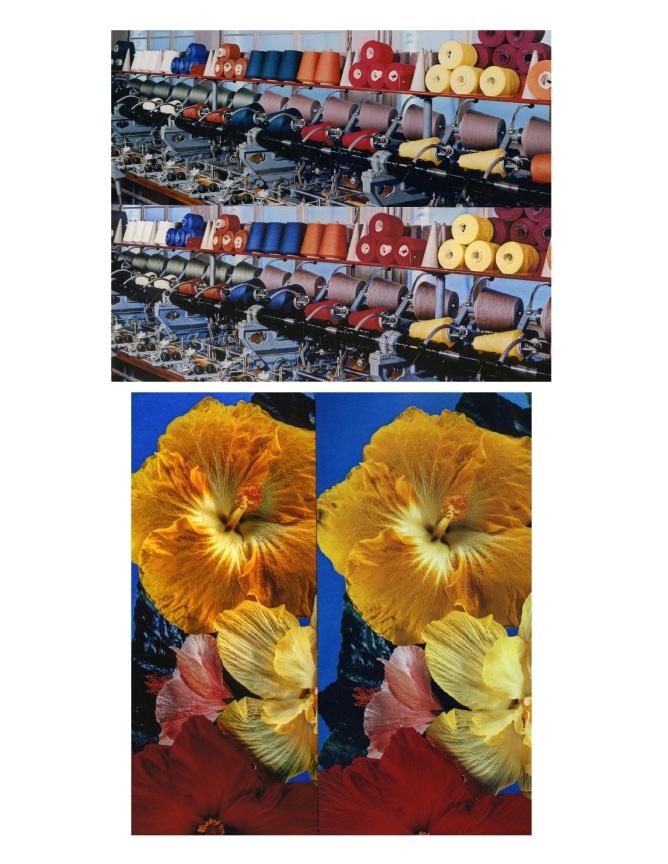 Dye Transfer print versus Inkjet Print scanned copy Daniel D. Teoli jr. mr