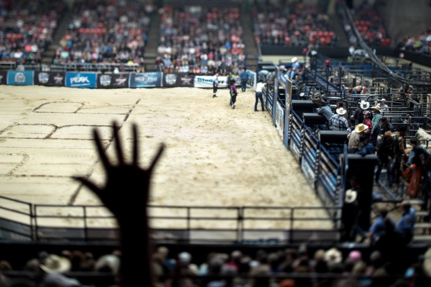 Rodeo copyright 2013 Daneil d. Teoli Jr. mr