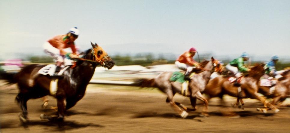 Santa Anita Copyright 1983 Daniel D. Teoli Jr. mrmr