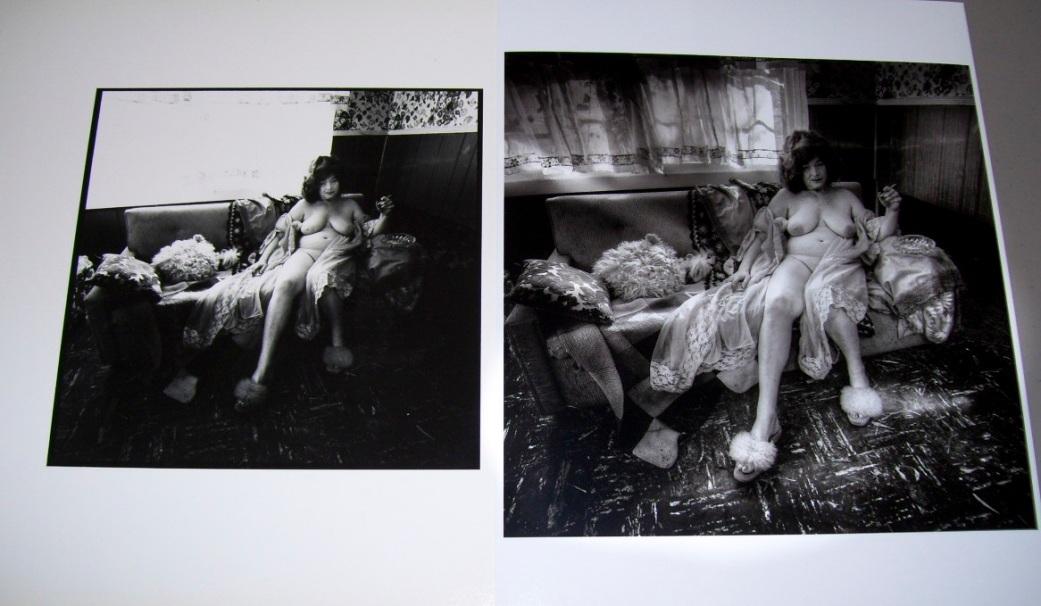 Sunlit Slipper Silver Print vs Inkjet Print Copyright 2013 Daniel D. Teoli Jr.
