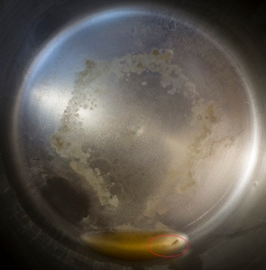 Brita 10 cup water filter results Whg WV tap water 1.28.16 (2)