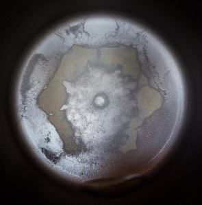 Distillation residue from 1 gallon of Beech Bottom, WV tap water 6.29 (1)