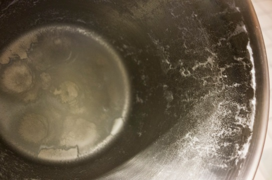 Distillation residue from 1 gallon of Evian Spring water 2