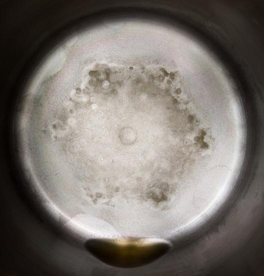 Distillation residue from 1 gallon of Los Angeles, CA tap water 7.26.17.jpg