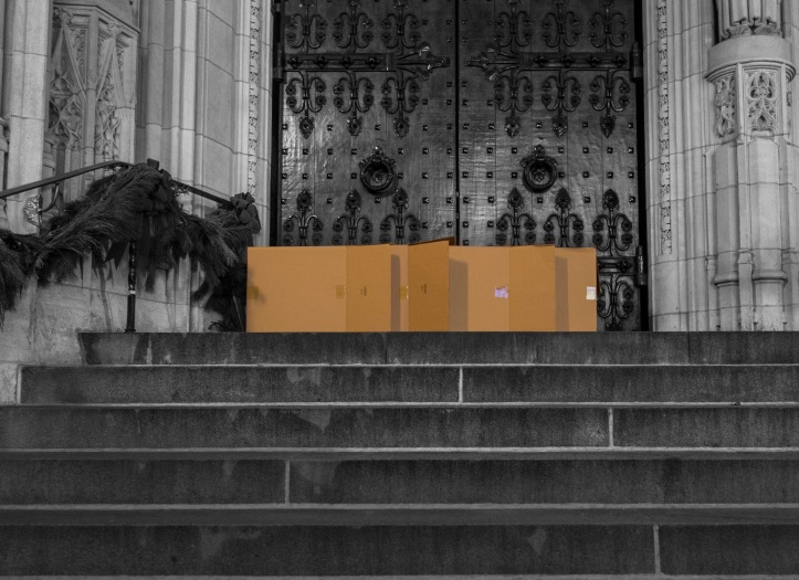 Living in a cardboard box D.D. Teoli Jr. lr 3