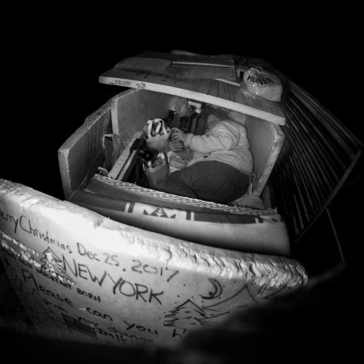 Living in a cardboard box NYC D.D. Teoli Jr. LR