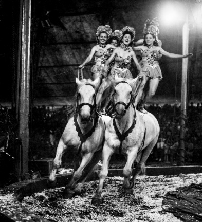 Circus Daniel D. Teoli Jr. Archival Collection