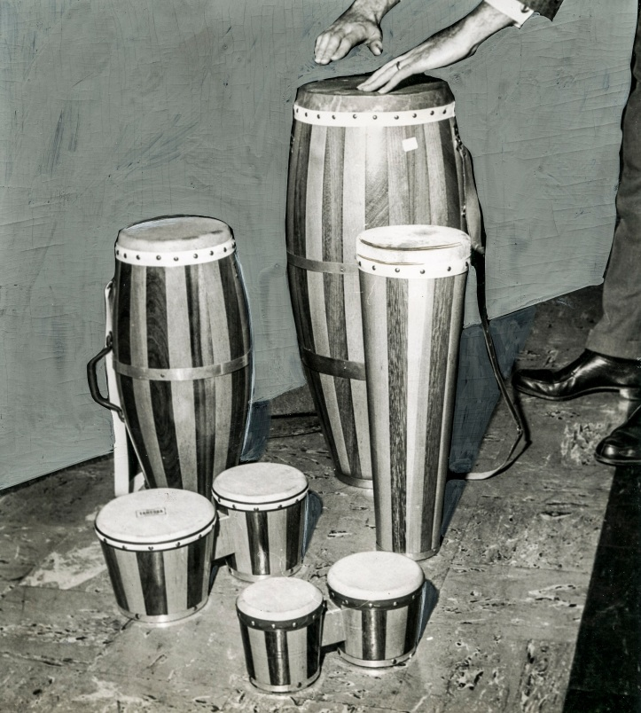 'Bongos - The Beatniks' Daniel D. Teoli Jr. Archival Collection