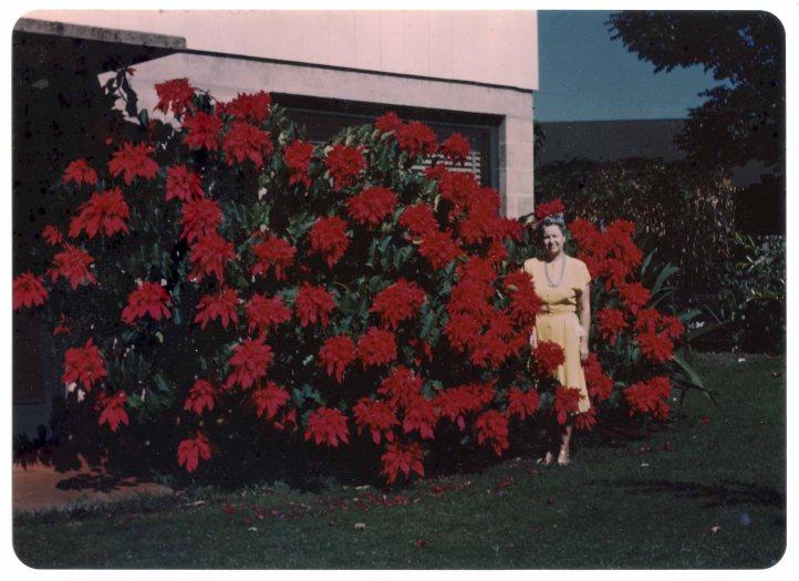 1 Kodachrome Enlargement 2.10.1950 D.D. Teoli Jr. Archival Collection